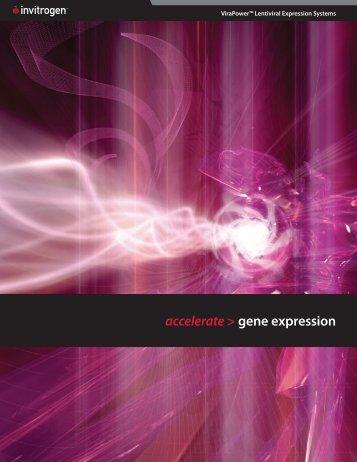 accelerate > gene expression - Invitrogen