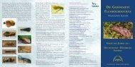 Insekt des Jahres 2013 - Julius Kühn-Institut