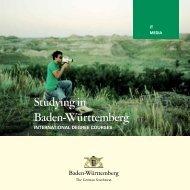 International Degree Courses - IT & Media - Study in Baden ...