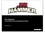Verkaufsunterlagenn B.Z.-Hammer ASMI - Axel Springer MediaPilot