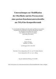 Untersuchungen zur Modifikation der Oberfläche - RWTH Aachen ...