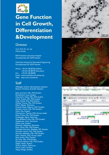 Gene Function in Cell Growth, Differentiation &Development