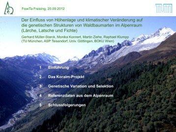 Müller-Starck_Der Einfluss von Höhenlage und klimatischer ...