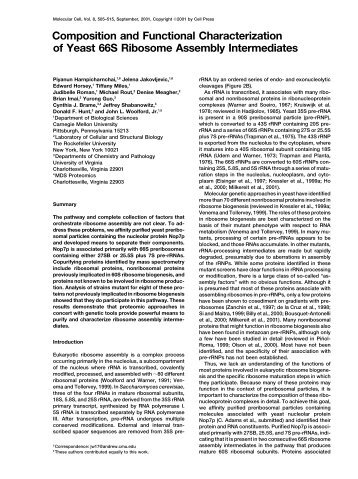 Composition and Functional Characterization of Yeast 66S ...