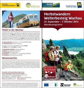 Herbstwandern Welterbesteig Wachau - Vinea Wachau