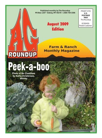 August 2009 - The Roundup