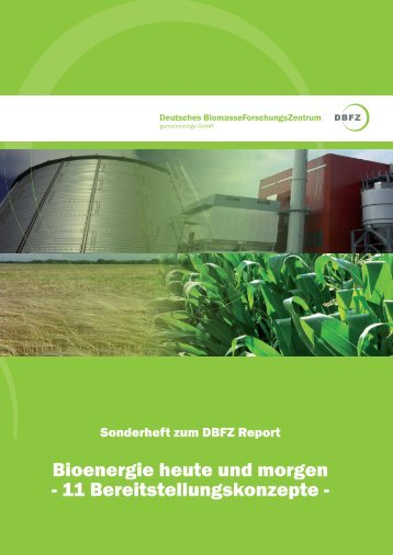 """""""Bioenergie heute und morgen – 11 Bereitstellungskonzepte"""" (PDF"""