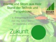 Wärme und Strom aus Holz: Stand der Technik und ... - Ziua Energiei