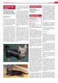 Der Terrier - Klub für Terrier e.V. - Seite 6