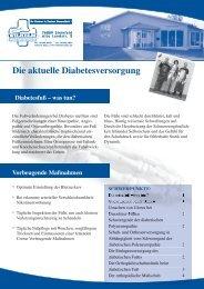fly-Diab-pat-info-2 (1).pdf