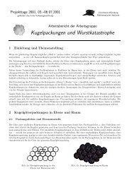 Kugelpackungen und Wurstkatastrophe - Institut für Mathematik ...