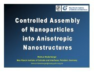 Markus Niederberger Max Planck Institute of ... - Nanoparticles