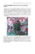 lnland Sand Ecosystems: Dynamics and restitution as a ... - Page 5