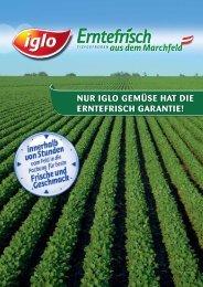 Erntefrisch-Folder - bei Iglo Gastronomie!