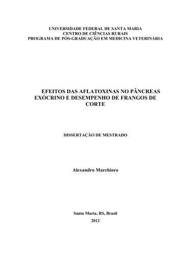 Alexandro Marchioro.pdf - UFSM