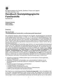 Handbuch Sozialpädagogische Familienhilfe - Bundesministerium ...