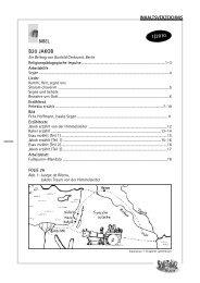 Gesamtes Livebook als PDF