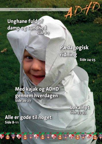 Pædagogisk ridning - ADHD: Foreningen