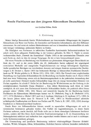 Fossile Fischfaunen aus dem jüngeren Känozoikum ... - quartaer.eu