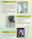 Veranstaltungen und Kurse Frühjahr - bummeln gehen - Seite 2