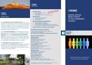 Info-Flyer - Chemie-Pharmazie - Universität Würzburg