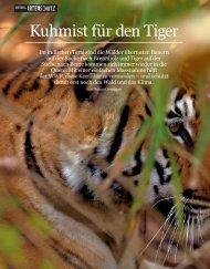 Kuhmist für den Tiger - WWF Schweiz
