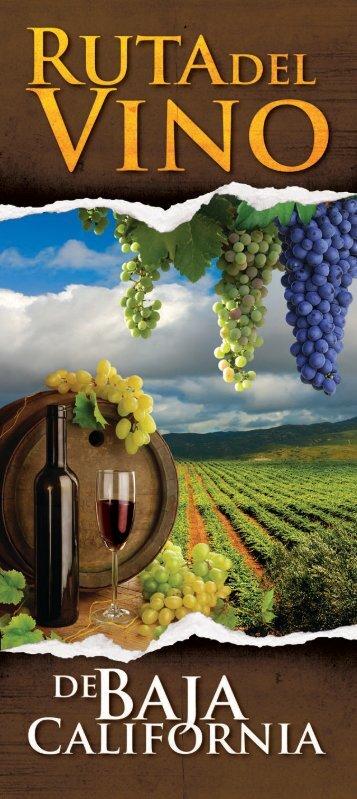 guiados a la Ruta del 'vino - Grand Baja Resort