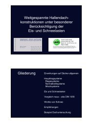 Weitgespannte Hallendach- konstruktionen unter besonderer ...
