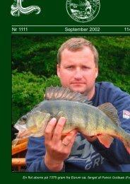 Nr 1111 September 2002 114. Årgang - Lystfiskeriforeningen