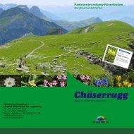 Bergblumenlehrpfad 2007 Bilder zusammendr