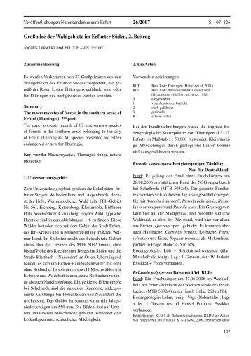 Großpilze der Waldgebiete im Erfurter Süden, 2. Beitrag 26/2007