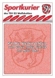 Sportkurier 4 10 - TSV 03 Wolfskehlen