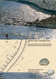•Befreite Emme, lebendiger Fluss (Datei ... - Kanton Bern