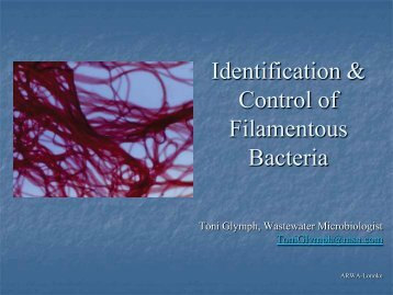 Identification and Control of Filamentous Bacteria