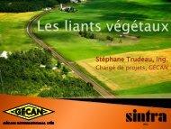 Les liants végétaux - Bitume Québec