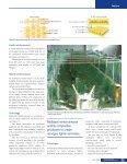 daha fazla bilgi - METYX Composites - Page 4