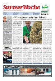 Ausgabe Surseer Woche 17. August 2012 - Neu auf www ...