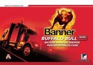 Componenta bateriilor Buffalo Bull SHD RO