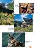 Turtmanntal - SAC Sektion Saas - Seite 6