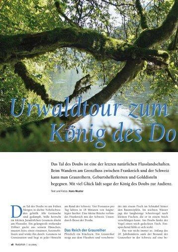 Das Tal des Doubs ist eine der letzten natürlichen ...