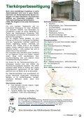 Gemeindeforum 2/10 (5,24 MB) - Marktgemeinde Gramatneusiedl - Seite 7
