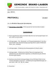 Protokoll Nr. 1/2006 (107 KB) - .PDF - Brand-Laaben