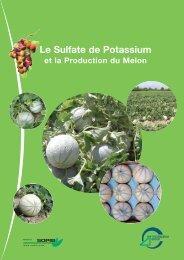 melon fr for pdf - Tessenderlo Group