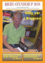 BSA juni 08 - Bjert Stenderup Net-Avis