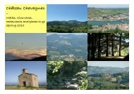 New 2010 Guide - Chateau Chavagnac