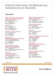 PDF zum Download - Fonds Soziales Wien