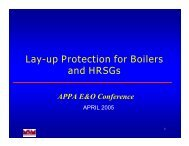 Lay-up Protection for Boilers and HRSGs - American Public Power ...