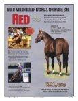 alphabetical - Barrel Racing Report - Page 3
