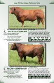 Lazy RC Ranch Bull Sale Lazy RC Ranch Bull Sale - Page 5