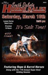 Sale Day Team RoPing - Corsica Horse Sale